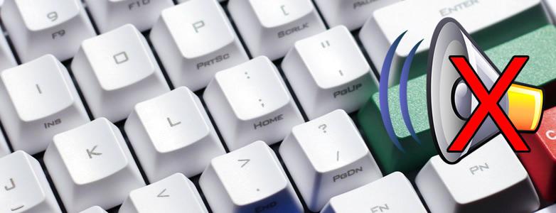 Quiet Mechanical keyboard